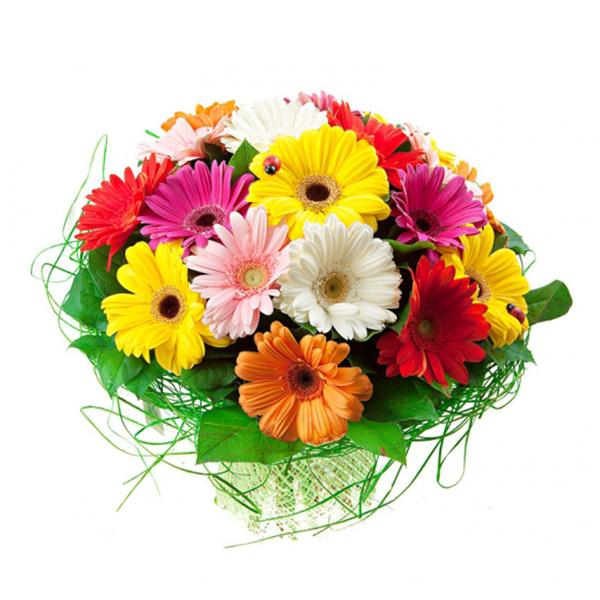 19 Mixed Color Gerbera bouquet