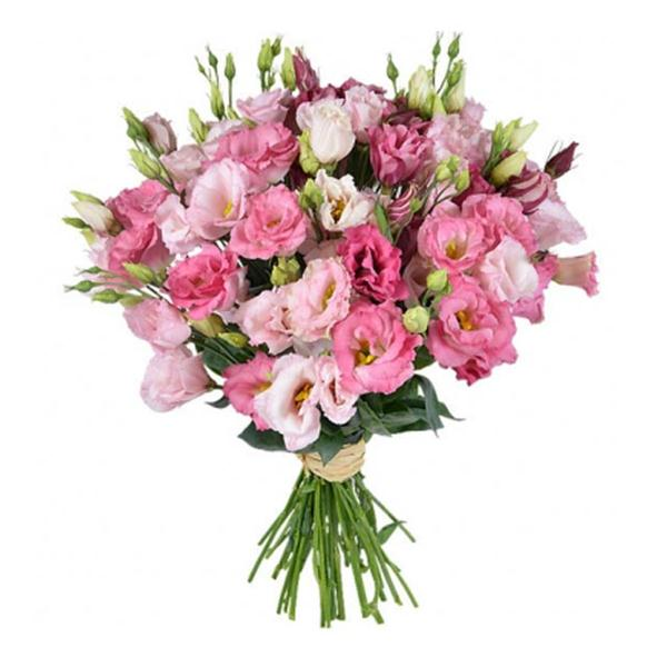 Bouquet of pink eustoma